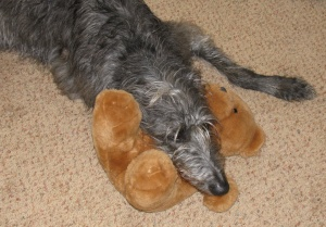 Maggie with bear